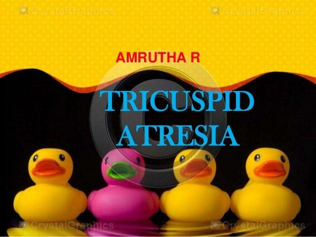 TRICUSPID ATRESIA AMRUTHA R