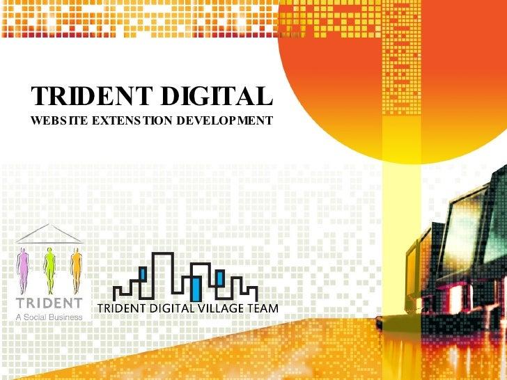 TRIDENT DIGITAL WEBSITE EXTENSTION DEVELOPMENT
