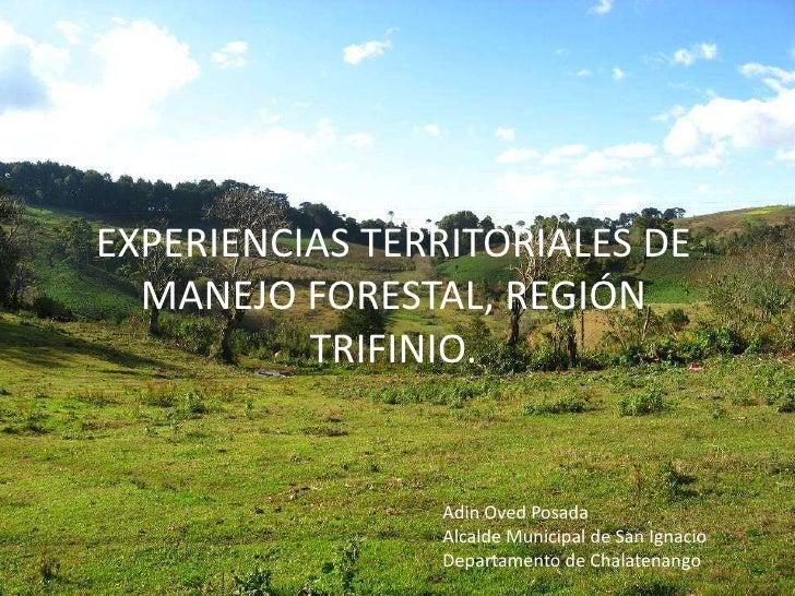 EXPERIENCIAS TERRITORIALES DE MANEJO FORESTAL, REGIÓN TRIFINIO.<br />Adin Oved Posada<br />Alcalde Municipal de San Ignaci...