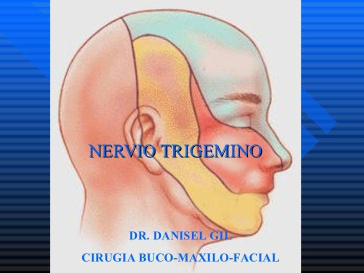 NERVIO TRIGEMINO DR. DANISEL GIL CIRUGIA BUCO-MAXILO-FACIAL