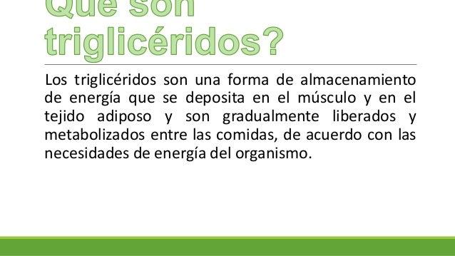 Triglic ridos - Trigliceridos alimentos ...