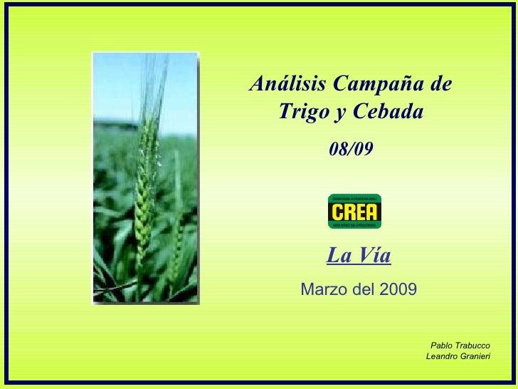 Análisis Campaña de Trigo y Cebada 08/09 La Vía Marzo del 2009 Pablo Trabucco Leandro Granieri