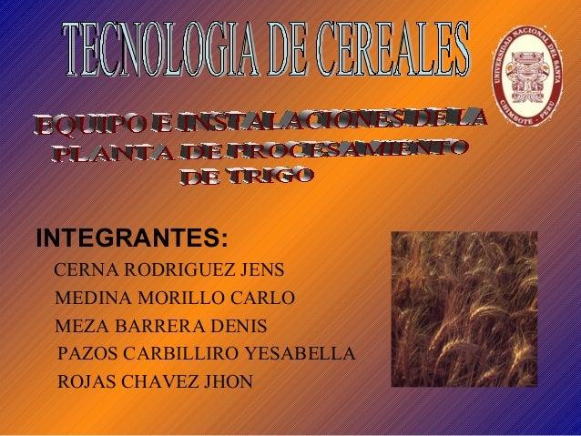 INTEGRANTES:  CERNA RODRIGUEZ JENS  MEDINA MORILLO CARLO  MEZA BARRERA DENIS  PAZOS CARBILLIRO YESABELLA  ROJAS CHAVEZ JHO...