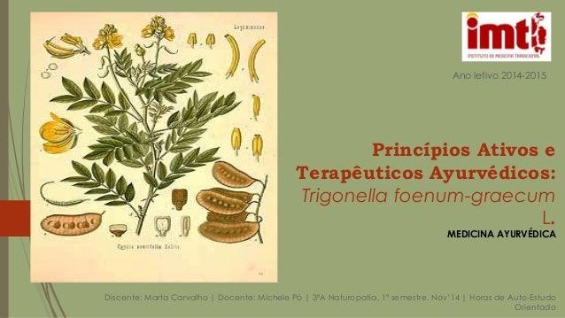 Princípios Ativos e Terapêuticos Ayurvédicos: Trigonella foenum-graecum L. MEDICINA AYURVÉDICA Discente: Marta Carvalho | ...