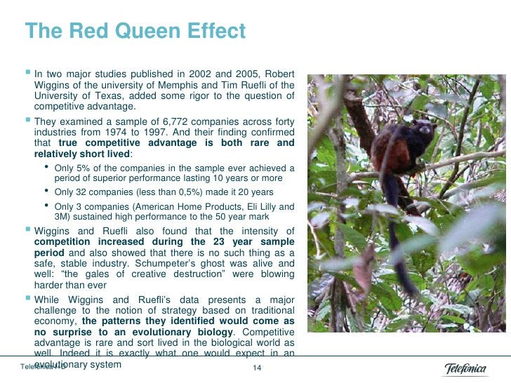 The Red Queen Effect In two major studies published in 2002 and 2005, Robert   Wiggins of the university of Memphis and T...