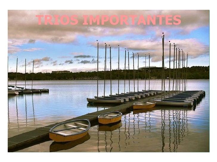 TRIOS IMPORTANTES