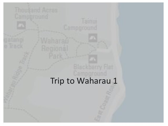 Trip to Waharau 1