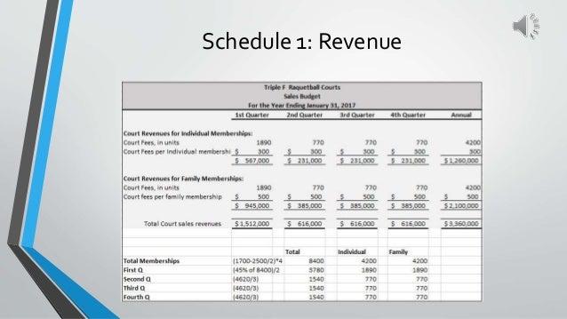Schedule 1: Revenue