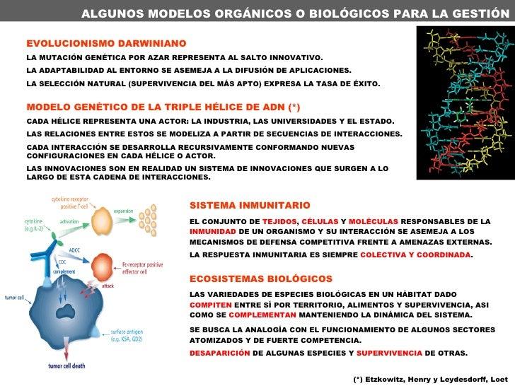 ALGUNOS MODELOS ORGÁNICOS O BIOLÓGICOS PARA LA GESTIÓN EVOLUCIONISMO DARWINIANO LA MUTACIÓN GENÉTICA POR AZAR REPRESENTA A...