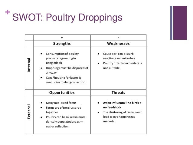 swot analysis dairy farm international Small enterprise development agency   62 sub-sector swot analysis 143  to transporting time-sensitive agricultural products to and from international markets.