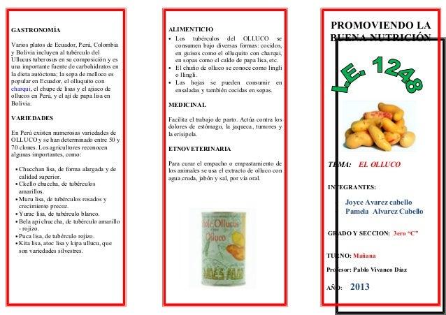 historia de la mazamorra morada pdf