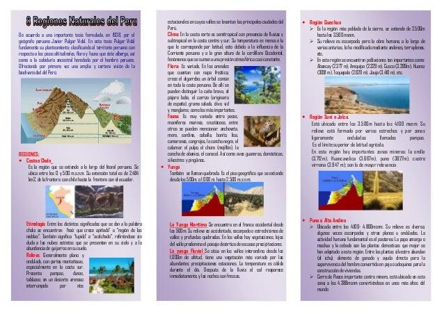 De acuerdo a una importante tesis formulada, en 1938, por el geógrafo peruano Javier Pulgar Vidal. En esta tesis Pulgar Vi...