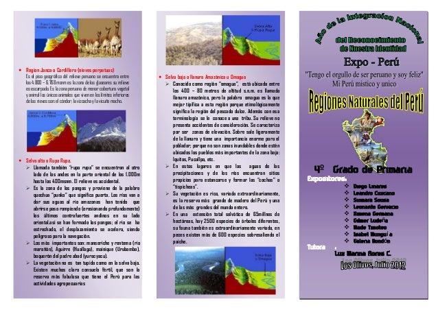  Region Janca o Cordillera (nieves perpetuas) Es el piso geográfico del relieve peruano se encuentra entre los 4.800 – 6....