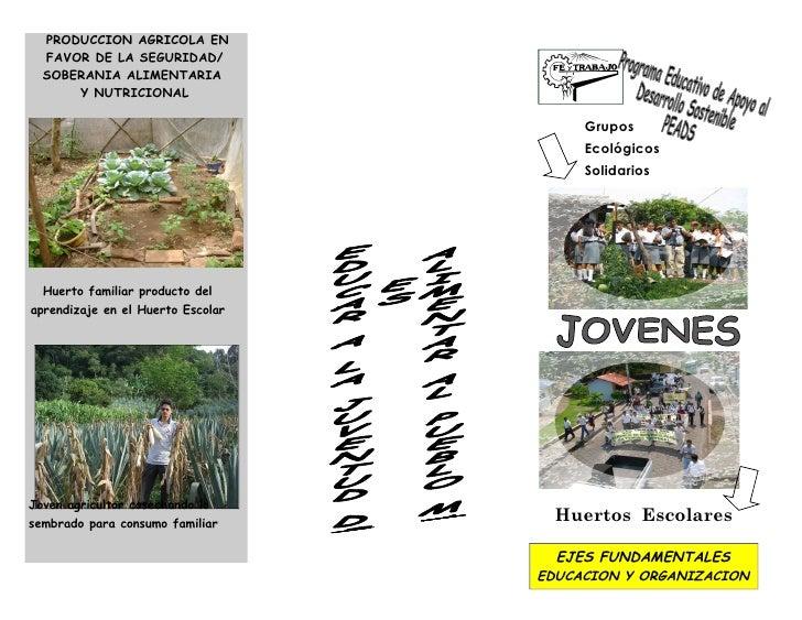 PRODUCCION AGRICOLA EN  FAVOR DE LA SEGURIDAD/  SOBERANIA ALIMENTARIA      Y NUTRICIONAL                                  ...