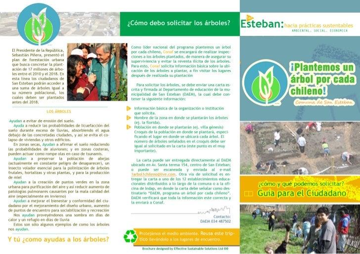 Triptico_ Plantemos un árbol por cada chilenoq