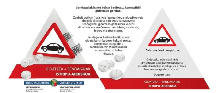 Triptiko gidatzea sendagaiak.pdf