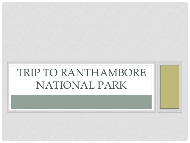 TRIP TO RANTHAMBORE NATIONAL PARK