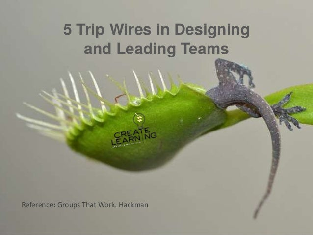5 Trip Wires in Designing and Leading Teams Reference: Groups That Work. Hackman