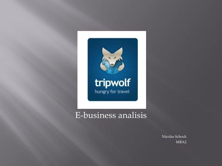 E-business analisis Nicolas Schock MBA2