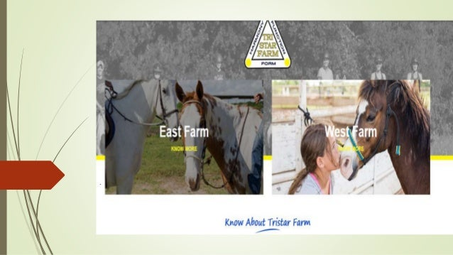 Tri-Star Farm is the best place to avail horse boarding and training …