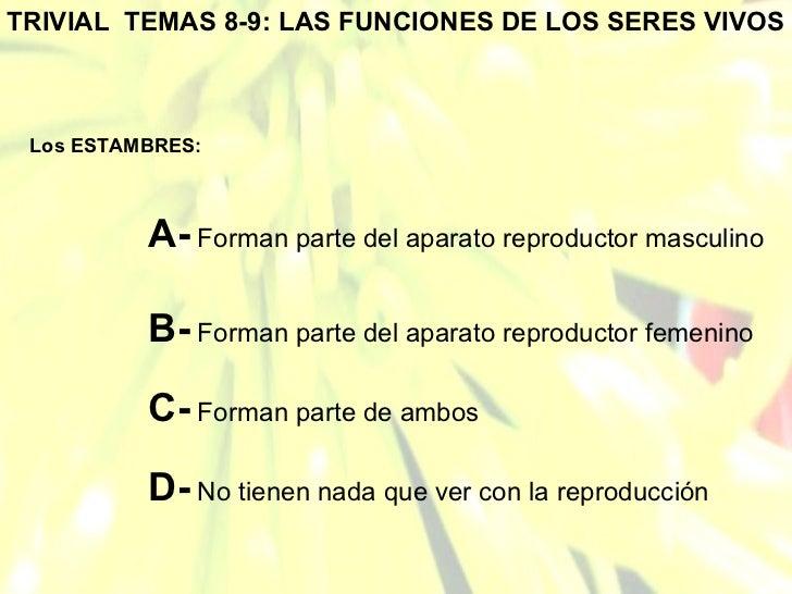 TRIVIAL  TEMAS 8-9: LAS FUNCIONES DE LOS SERES VIVOS Los ESTAMBRES: A-  Forman parte del aparato reproductor masculino B- ...