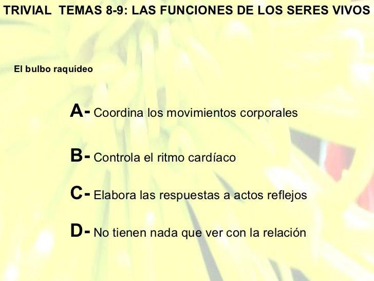 TRIVIAL  TEMAS 8-9: LAS FUNCIONES DE LOS SERES VIVOS El bulbo raquídeo A-  Coordina los movimientos corporales B-  Control...