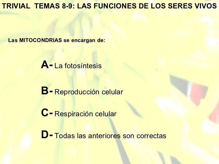 TRIVIAL  TEMAS 8-9: LAS FUNCIONES DE LOS SERES VIVOS Las MITOCONDRIAS se encargan de: A-  La fotosíntesis B-  Reproducción...