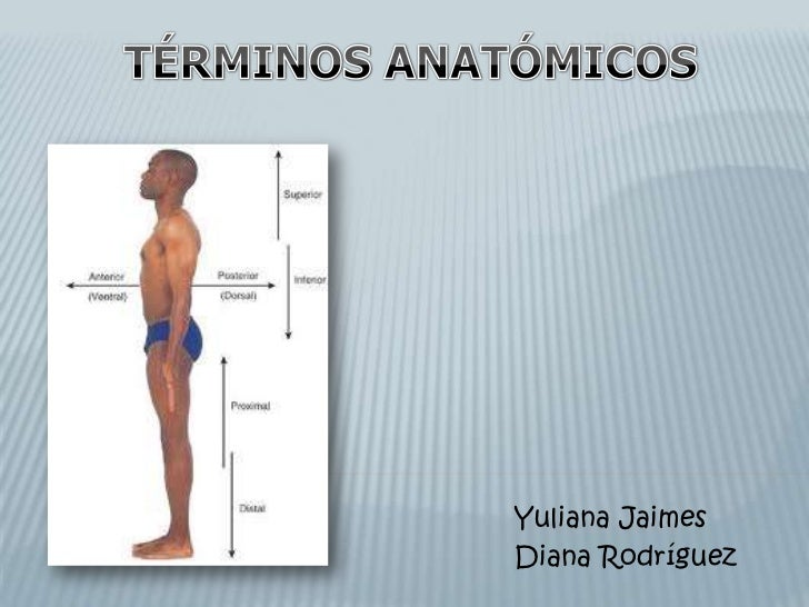 Yuliana JaimesDiana Rodríguez
