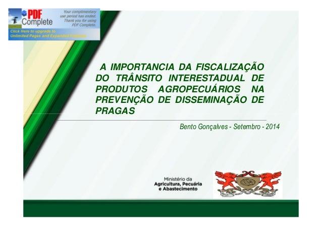 """""""A IMPORTANCIA DA FISCALIZAÇÃO  DO TRÂNSITO INTERESTADUAL DE  PRODUTOS AGROPECUÁRIOS NA  PREVENÇÃO DE DISSEMINAÇÃO DE  PRA..."""