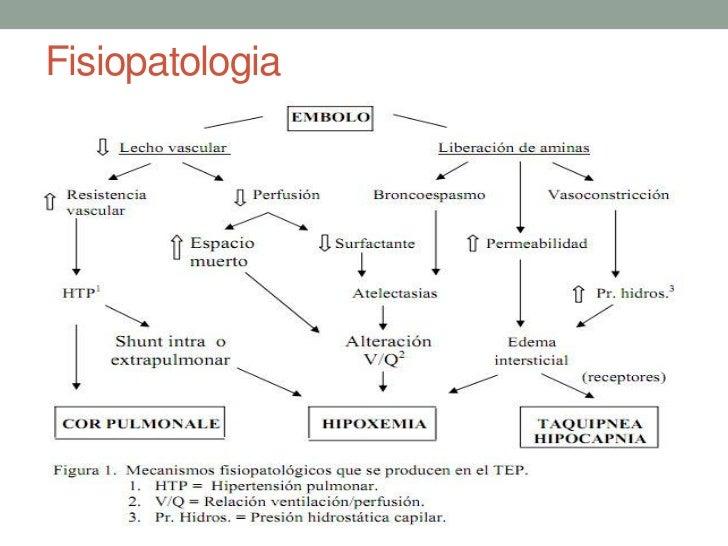 A fisiopatologia do melasma uma abordagem geral e o tratamento com ácido tranexâmico 8