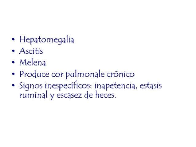 La trombosis de la fístula el código por mkb