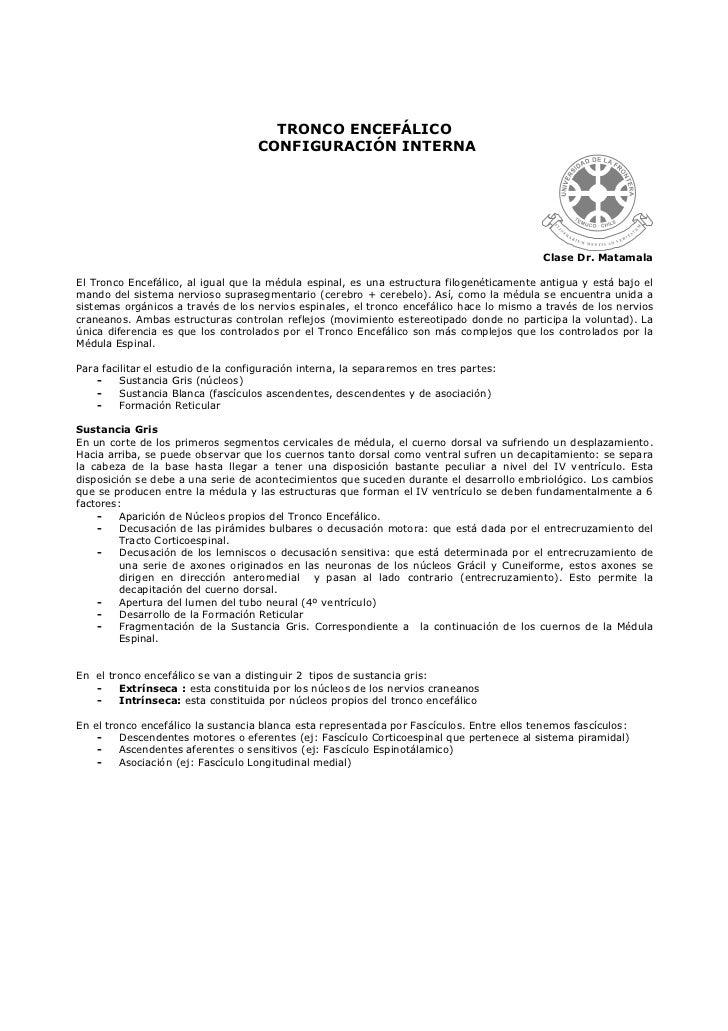 TRONCO ENCEFÁLICO                                    CONFIGURACIÓN INTERNA                                                ...