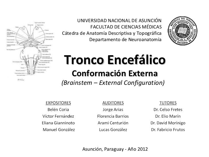 UNIVERSIDAD NACIONAL DE ASUNCIÓN            FACULTAD DE CIENCIAS MÉDICASCátedra de Anatomía Descriptiva y Topográfica     ...