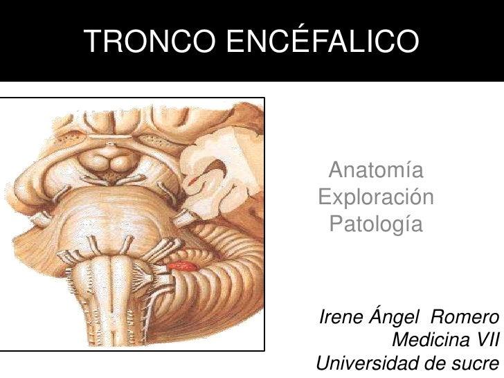 TRONCO ENCÉFALICO<br />Anatomía<br />Exploración <br />Patología <br />Irene Ángel  Romero<br />Medicina VII<br />Universi...