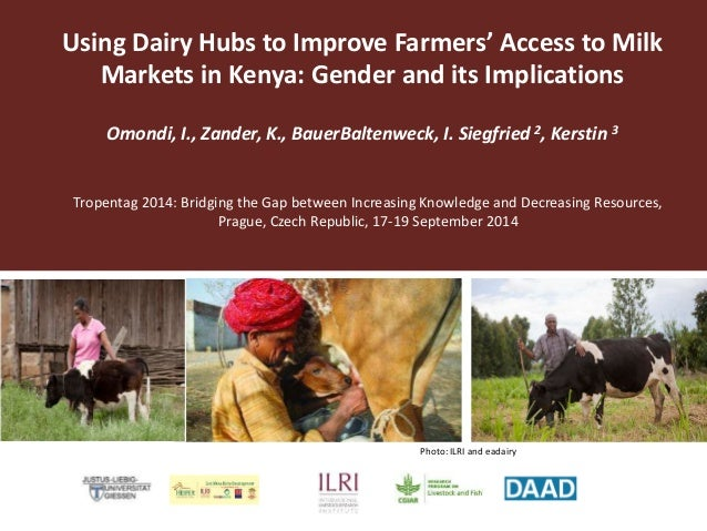 Using Dairy Hubs to Improve Farmers' Access to Milk  Markets in Kenya: Gender and its Implications  Omondi, I., Zander, K....