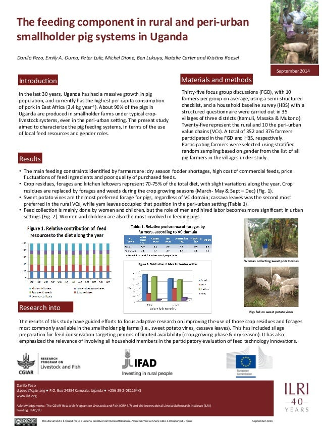 The  feeding  component  in  rural  and  peri-­‐urban  smallholder  pig  systems  in  Uganda  Danilo  Pezo,  Emily  A.  Ou...