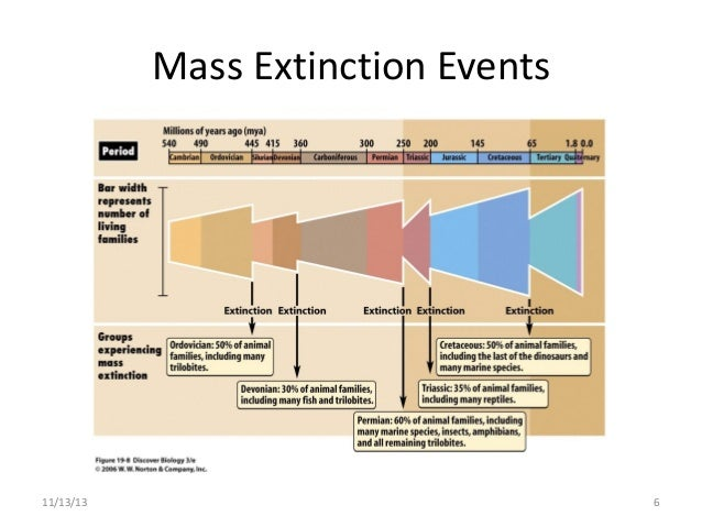 """mass extinctions research task The rensselaer idea program will develop research and  task force exploring greek  titled """"quantifying ecological impact of mass extinctions with."""