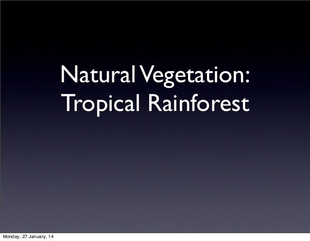 Natural Vegetation: Tropical Rainforest  Monday, 27 January, 14