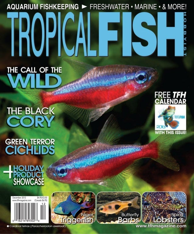 Tropical fish hobbyist december 2012 for Tropical fish magazine