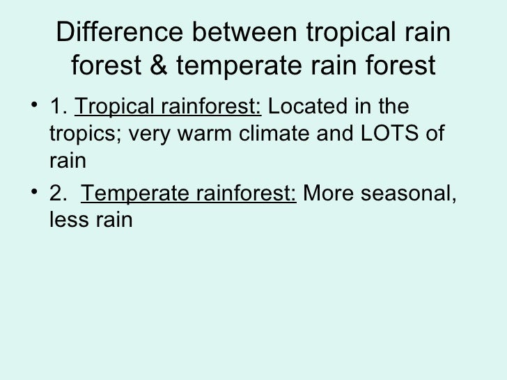 what is the difference between tropical and temperate rainforests