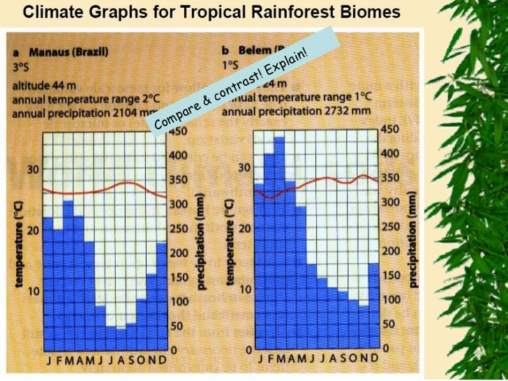 an introduction to the tropical rainforests of the world This book is a good general introduction to the tropical rainforest of the world it  includes sections on plants, ecology, convergent evolution, and human use.