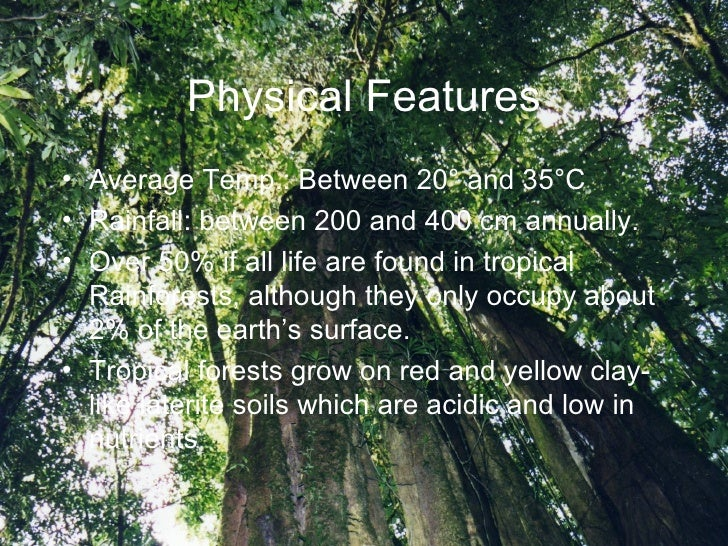 the main characteristics of the spider Physical characteristics of spider monkeys the main focus of this page is to study the physical characteristics of spider monkeys the spider monkeys of the new world, which is the western.