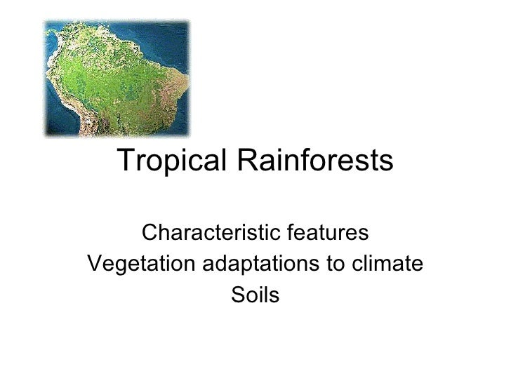 Tropical Rainforests Characteristic features Vegetation adaptations to climate Soils
