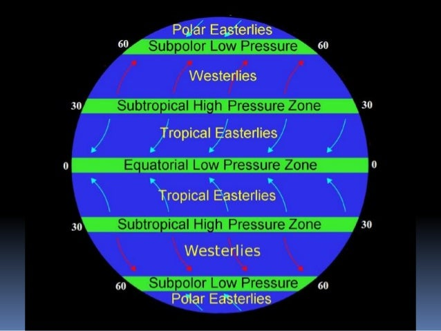 Tropical Circulation  All of activity of Tropical  Circulation become in Tropical zone.  What is Tropical zone ?