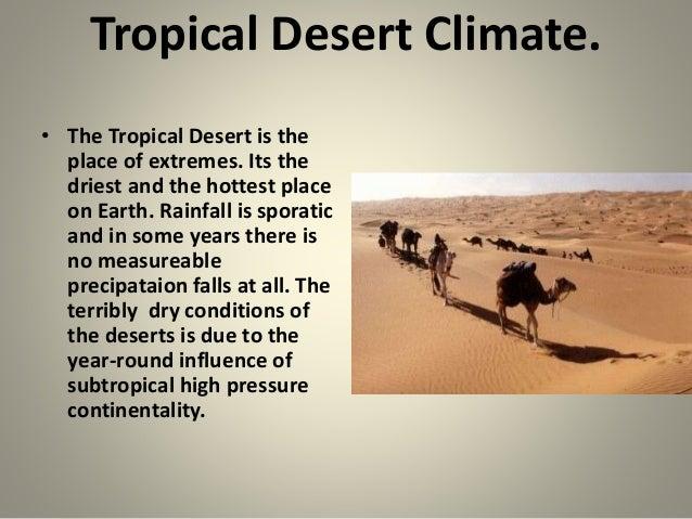 tropical desert