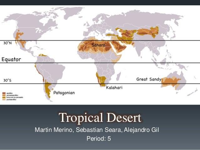 Tropical desert period 5 tropical desert martin merino sebastian seara alejandro gil period 5 gumiabroncs Image collections