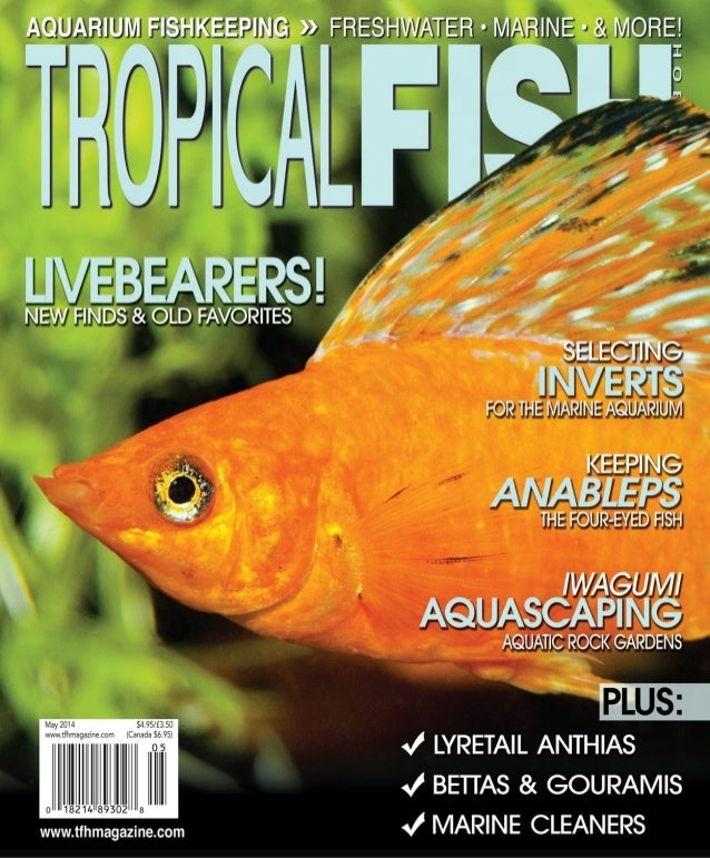 Tropical fish hobbyist magazine may 2014 for Tropical fish hobbyist
