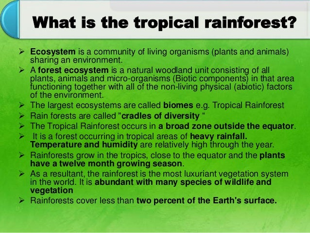 what is a forest ecosystem Within specific forest ecosystems, the maintenance of ecological processes is dependent upon the maintenance of their biological diversity for more information on forest biodiversity see vital forest graphics.