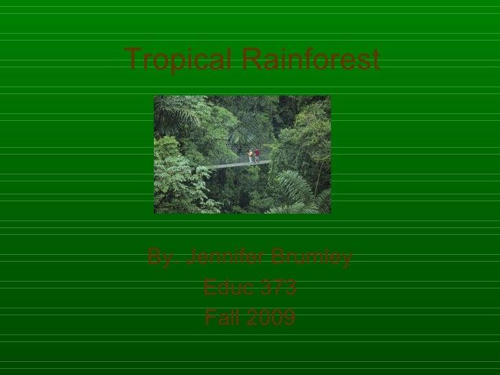 Tropical Rainforest By. Jennifer Brumley Educ 373 Fall 2009