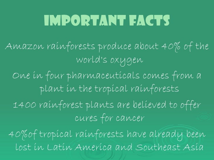a description of how important it is to preserve and save tropical rain forests Have you wondered why rain forests are so important why save the rain forests explains how rain forests touch everyone's life tropical rain forests are rich with plants and animals — some that few people have ever seen.